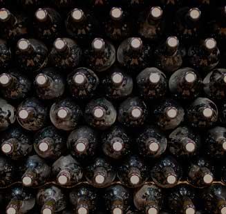 vins fantastics